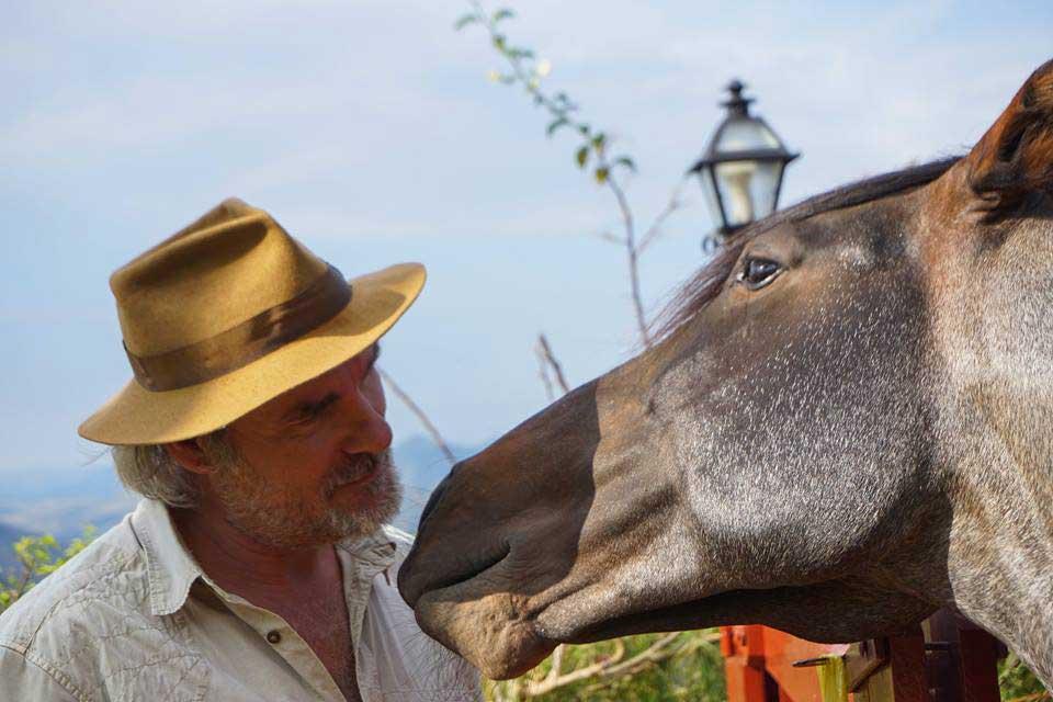 Ecolodge-Eldorado-paarden