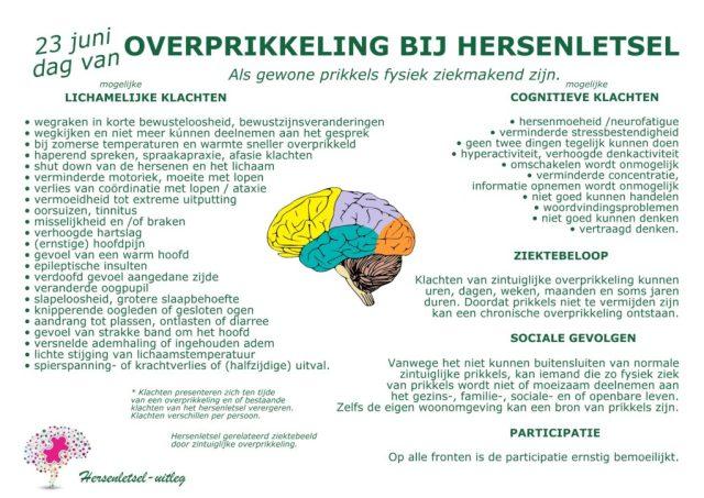 poster overprikkeling bij hersenletsel