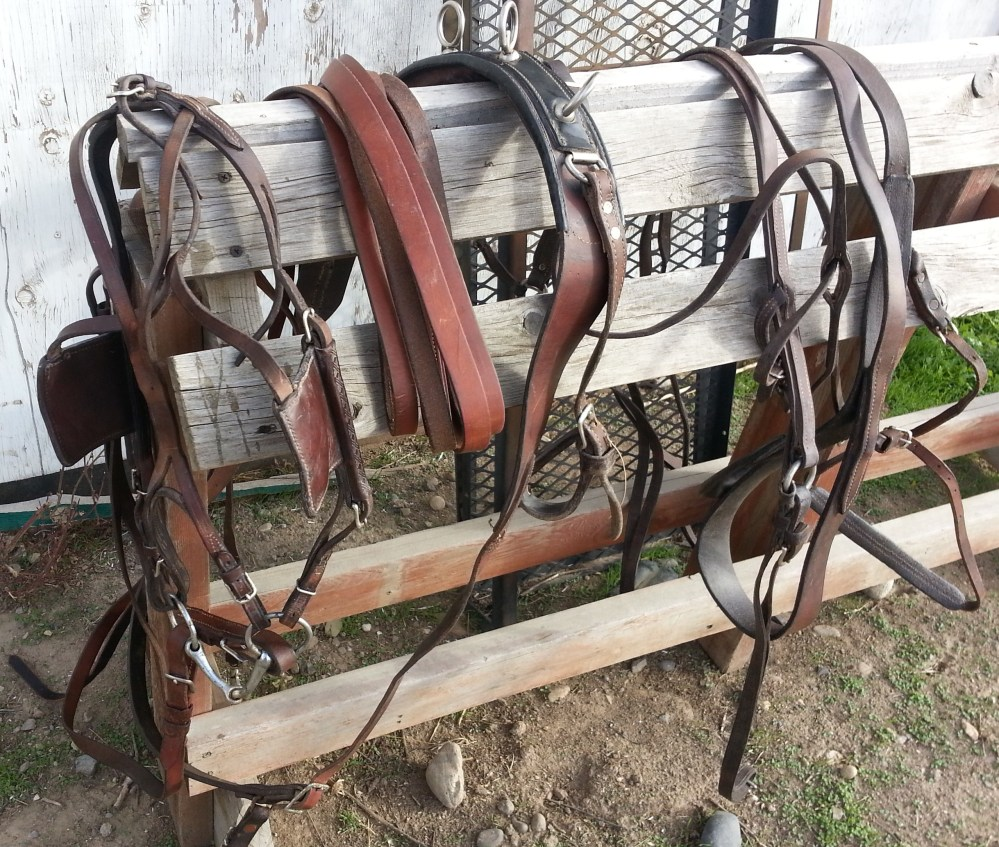 medium resolution of pony harness very nice condition russet pony single breast collared harness used with 12 13 hand ponies 200