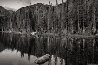 Quiet light at Nymph Lake