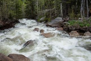 Glacier Creek Roil