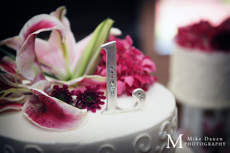 willow heights mansion morgan hill photography wedding mike danen
