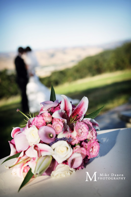 wedding photographer santa cruz morgan hill willow heights mike danen