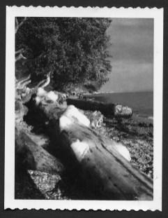 polaroidpic8