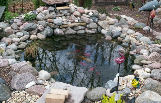 This outdoor shot of a pond has an almost digital clarity to it.