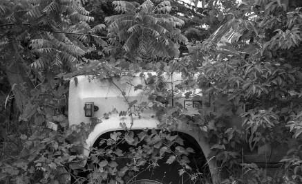 Leica-6