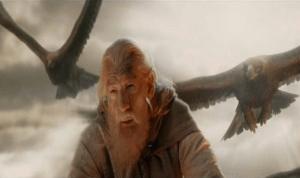 gandalf-birds