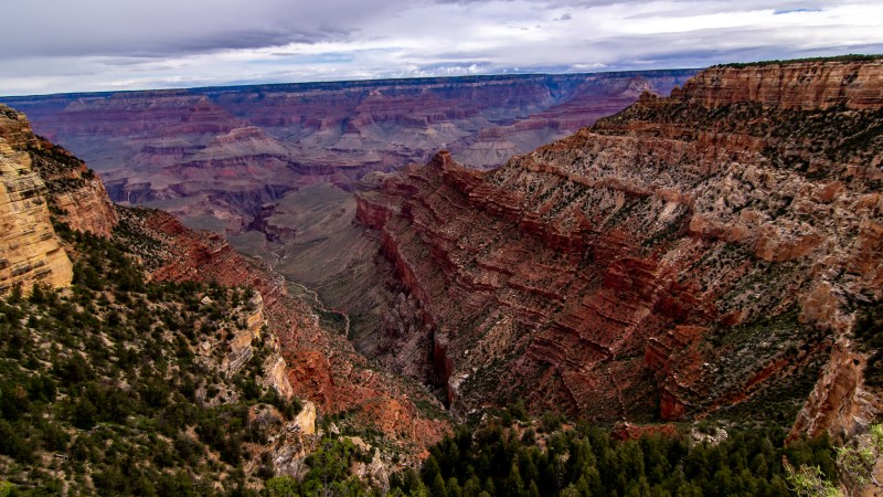 The Grand Canyon - Pipe Creek Vista