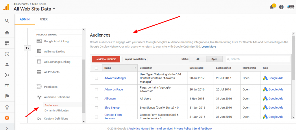 Remarketing Audiences