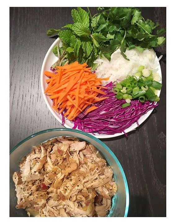 Vietnamese Chicken Spring Rolls Recipe