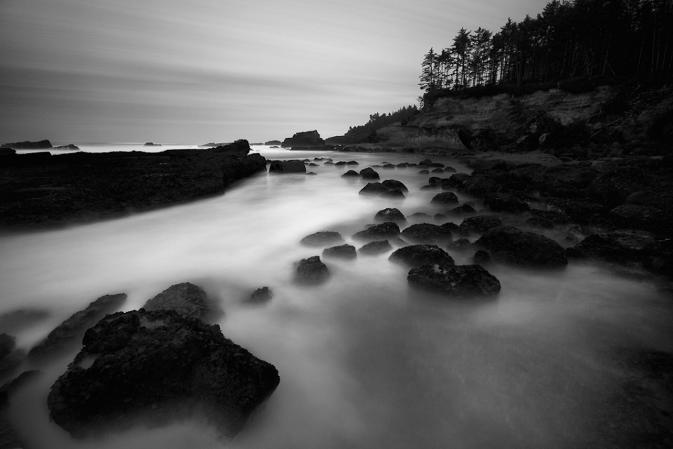 Alien - Boiler Bay Oregon