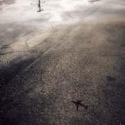 Airplane - Downtown Urban Phoenix Reflection