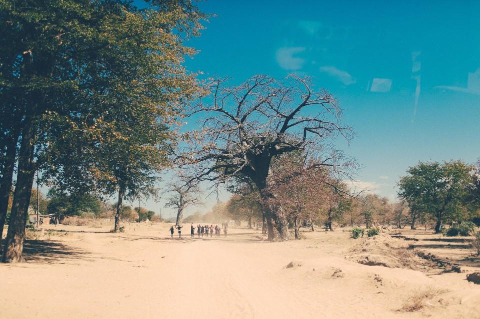 Africa-036