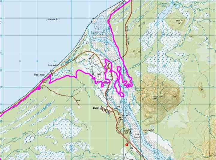 Map of the Haast region with an 8 m higher coastline (pink line). The Haast Pub and bridge are underwater at high tide. Many of the inland swamps may be salty.