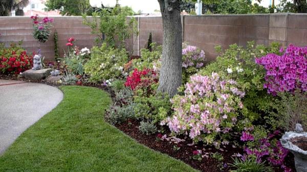 drought tolerant landscaping fresno