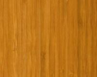 Bamboo Floors: Richmond Bamboo Flooring