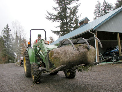 snoqualmie landscaping