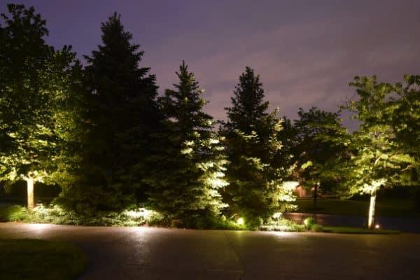 tree lighting outdoor lights mike s