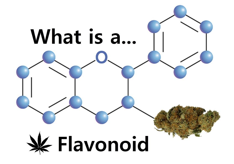 Aphrodisiac The Sexual Secret Of Marijuana 1971 growing cannabis – mike's medicines