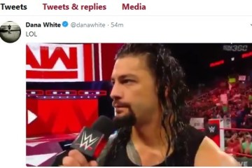 roman-reigns-addresses-brock-lesnar-ass