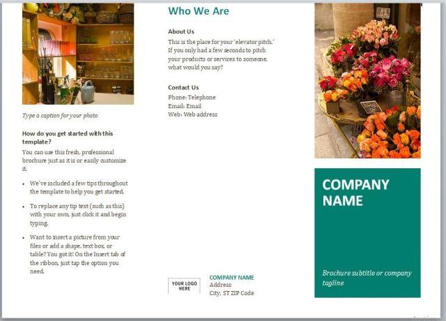 Company Brochure Template 15