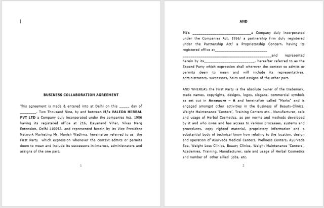 Franchising Agreement 01..