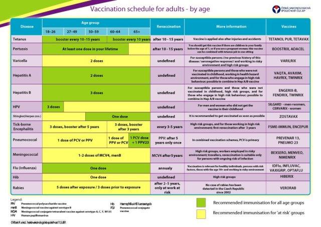 Immunization and Vaccination Schedule Template 13
