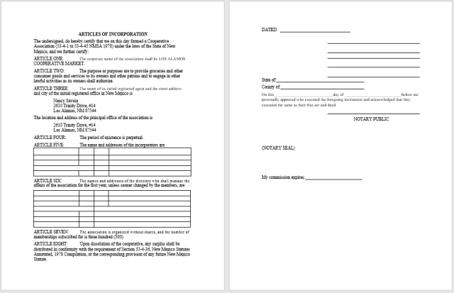 articles of incorporation template 13