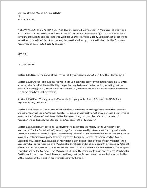 llc operating agreement template 10