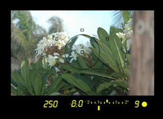 under1 exposure