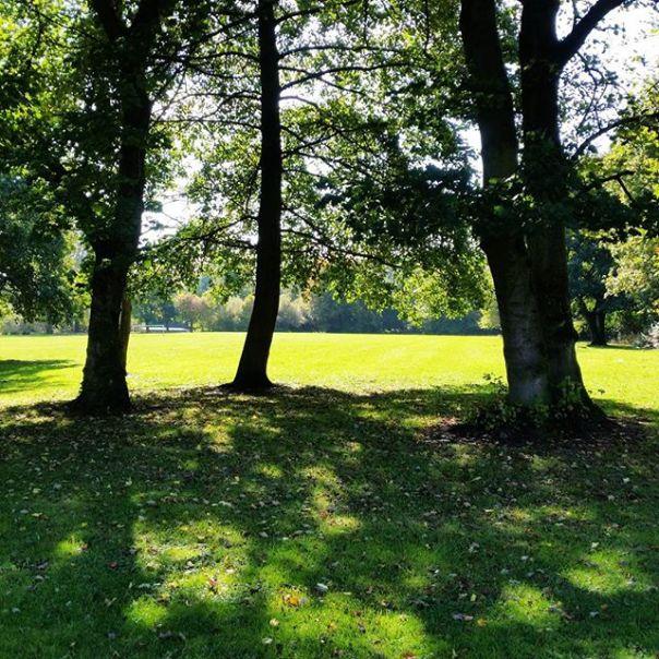 Ince Park Wigan