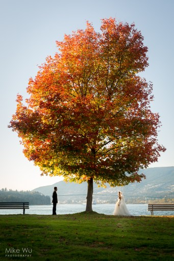 Vancouver, Wedding, tree, fall, autumn, tree, standing, love, beautiful, nature, landscape, newlyweds, lighthouse park, Stanley Park, natural, leaves, orange, earthy, warm, sunset, water, bench