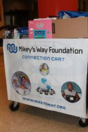Mikey's Way Cart