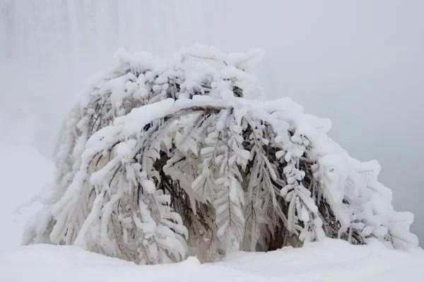 Arte e inverno