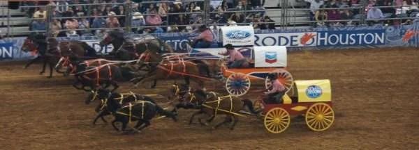 Corrida de carroças no Rodeo Houston