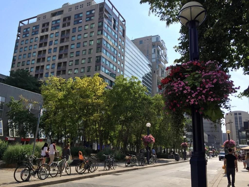 Toronto entre as melhores cidades
