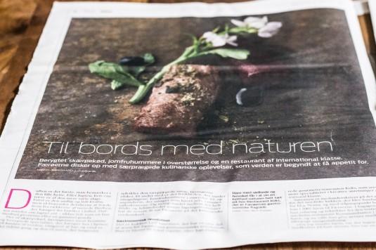 Færøerne artikel i JP - mikkelbaekgaard