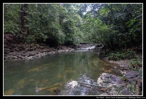 [2020-01-19] Rio Dulce - Finca Tatin - 24
