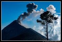 [2020-02-19] Acatenango - Trek - 25