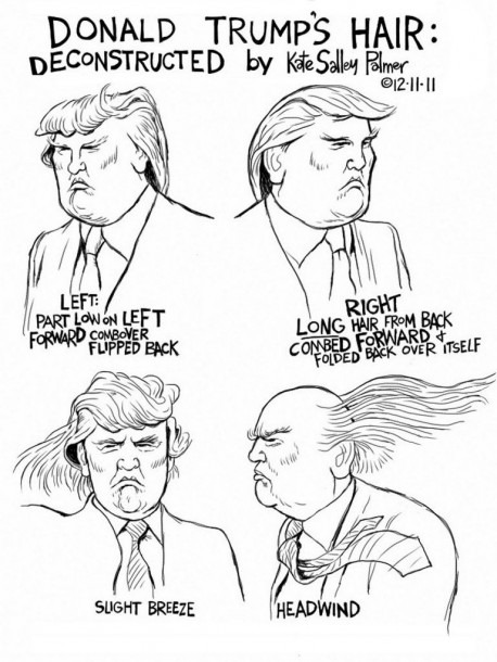 Donald Trump Hair Diagram