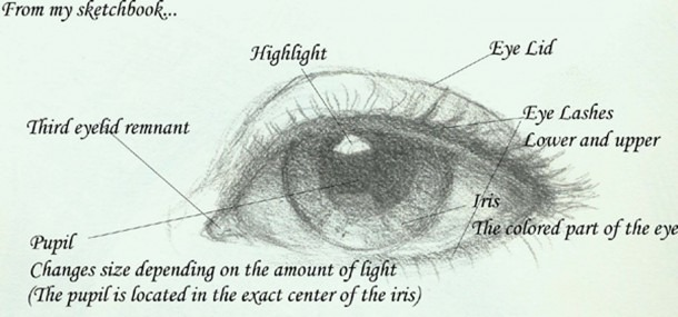 Labeled Eye Diagram