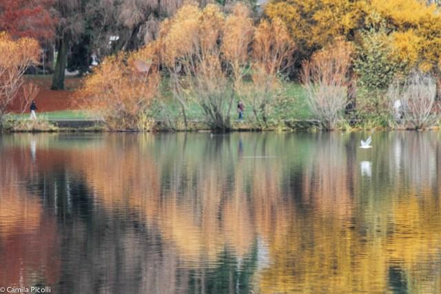 Parques em Seattle - Green Lake Park