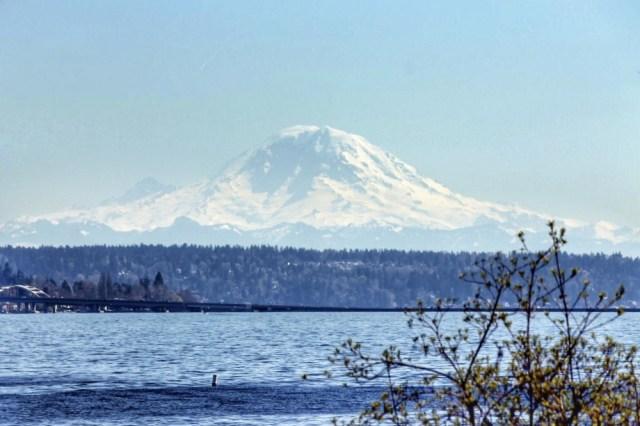 Madison Park - lugares para fotografar o Mount Rainier