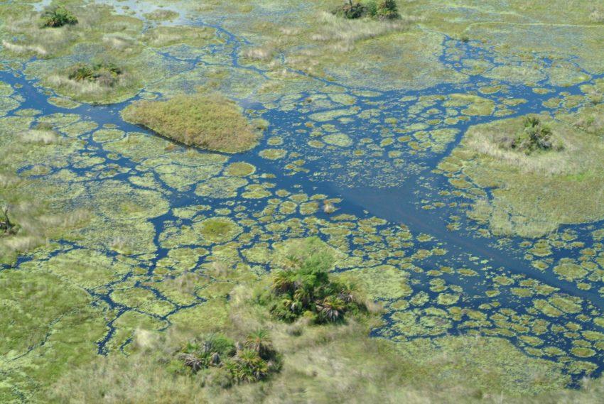 Il Delta dell'Okavango visto dall'alto