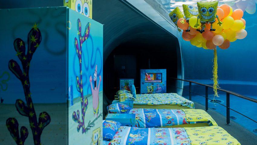 La stanza da dove osservare i delfini