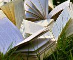 Sormani d'estate, dieci incontri, dieci autori in biblioteca