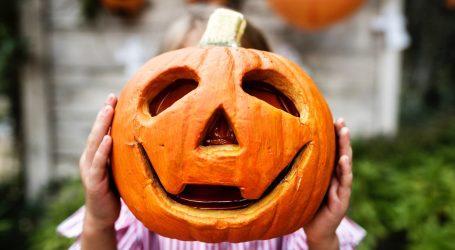 Zucca di Halloween fai da te: le cinque idee più divertenti