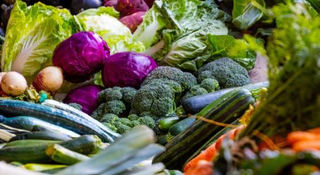 mercato agricolo san siro