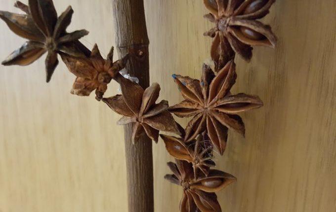 Baum aus Sternanis