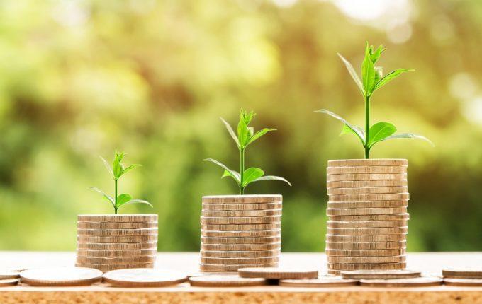 Pflanzen wachsen auf Münzen